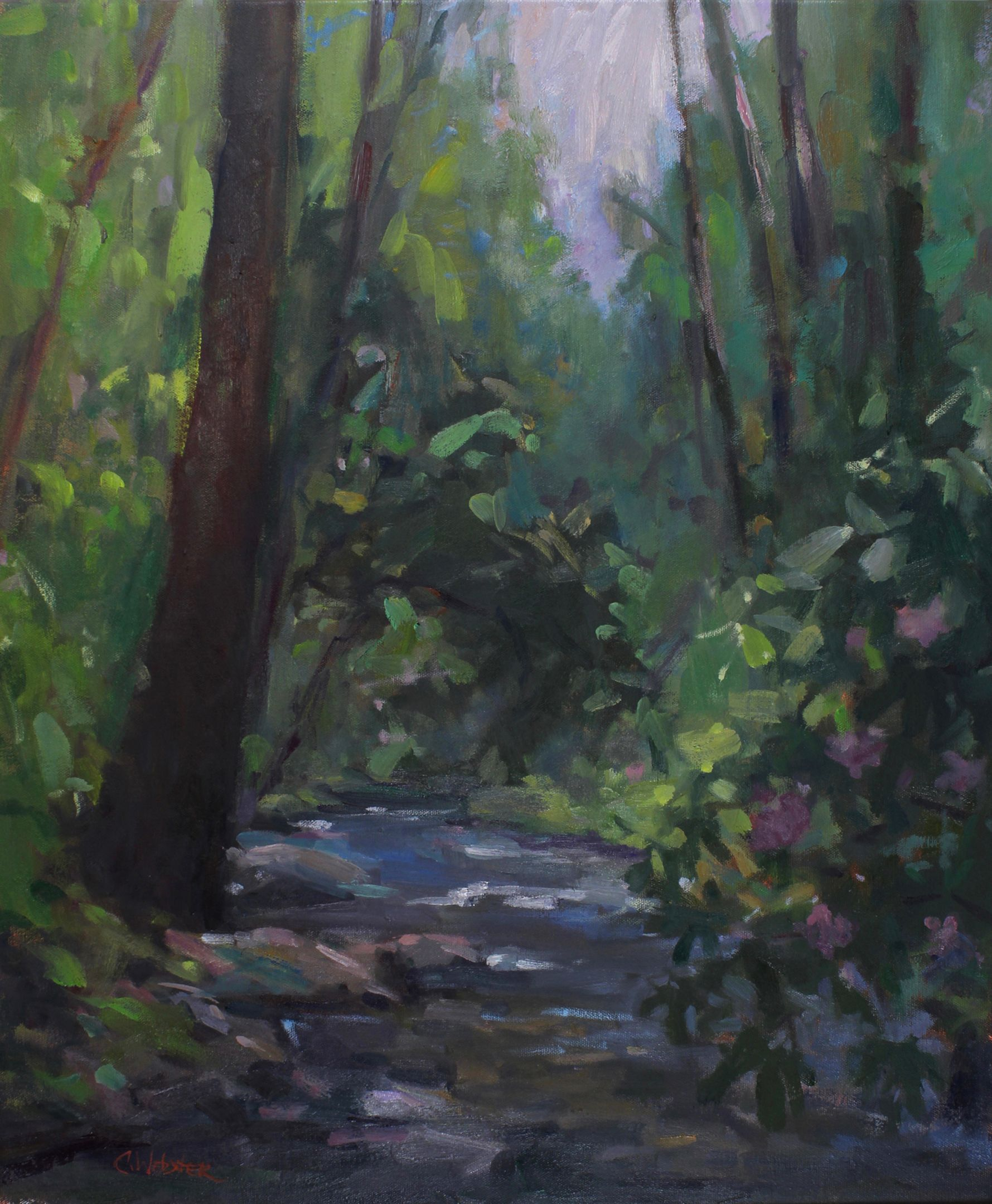Creek with Rhododendrons